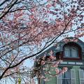 Photos: 西洋館に咲く