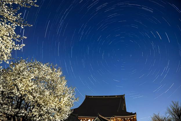笹部桜&北極星