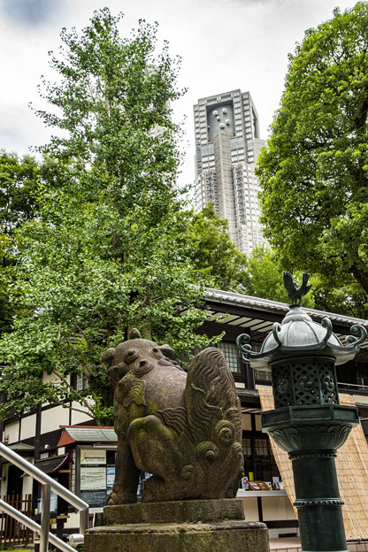新宿十二社熊野神社
