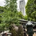 Photos: 新宿十二社熊野神社