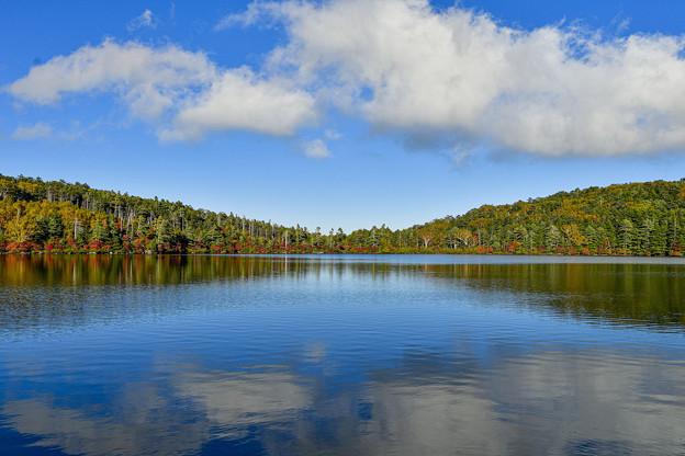 再現像「秋景白駒池」