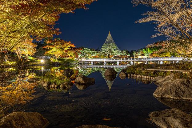 日本庭園ライトアップ
