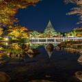 Photos: 日本庭園ライトアップ