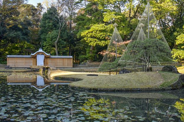 小石川後楽園 (3)
