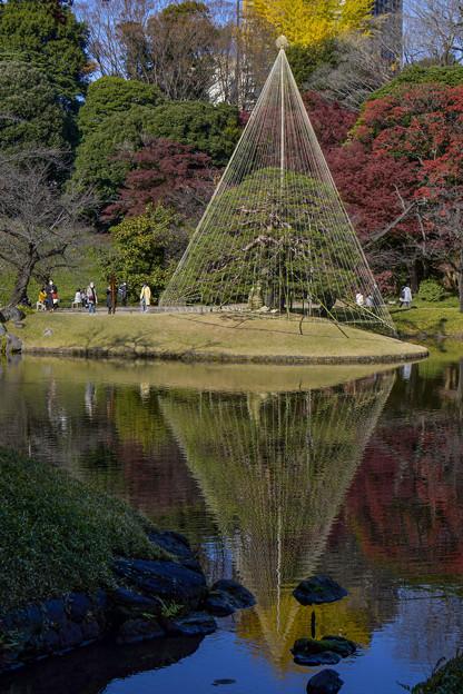 小石川後楽園 (4)
