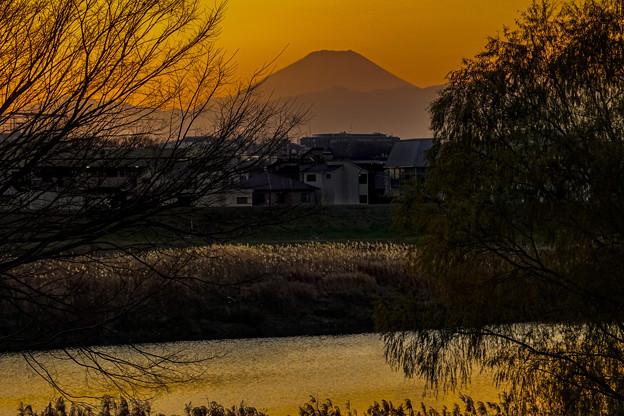 昨夕富士山