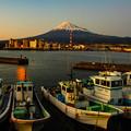 Photos: 田子の浦
