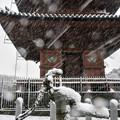 Photos: 雪の本門寺2018-1-22