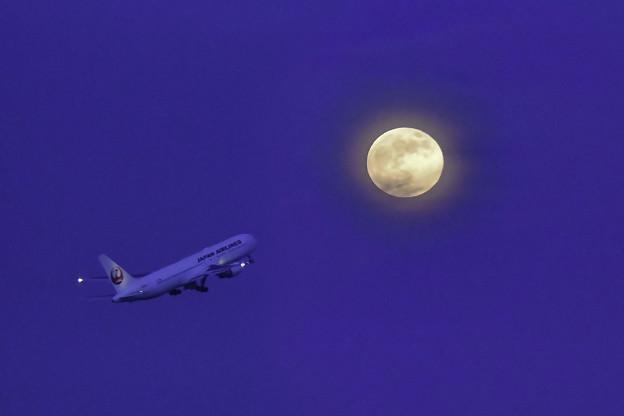 Photos: 満月の宵