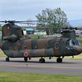 Photos: CH-47J 52933/JG-2933 106Avn