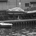 写真: 昭和53年 石津川風景