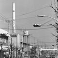写真: 昭和53年 福助足袋工場