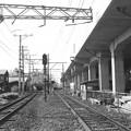 写真: 昭和53年 南海線湊駅付近