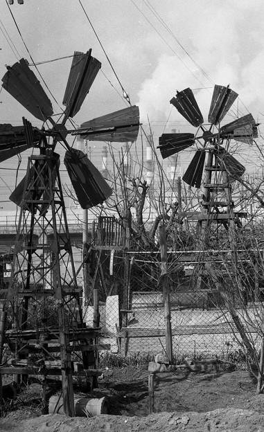 S53灌漑用風車4