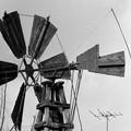 写真: S53灌漑用風車5