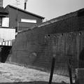 Photos: S53大和川沿いのレンガ塀3