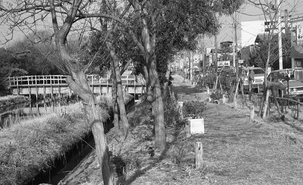 S53 旧大浜線沿線風景2