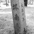 写真: S53 南臺場(台場)石碑