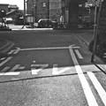 Photos: S53_旧九間橋付近
