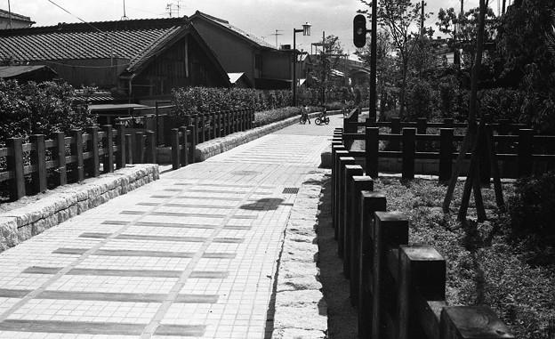 南海平野線跡の遊歩道