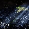 写真: 小さな宇宙