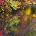 秋のパレット