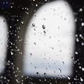 Photos: 窓ガラスの滴たち