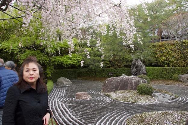 20180408ブログ京都 3