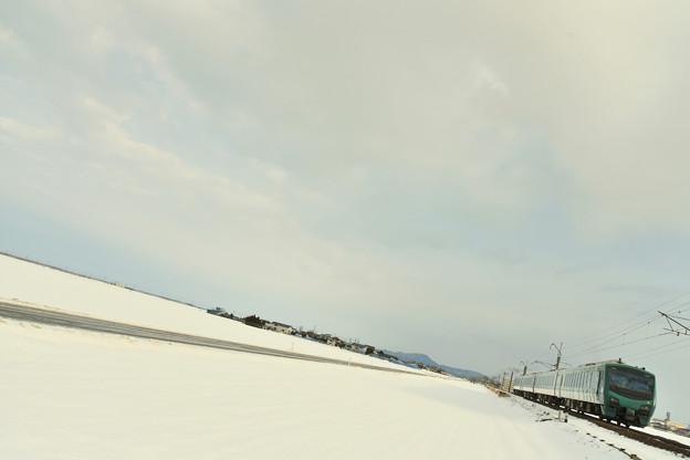 雪のブナ編成2