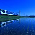 Photos: 青い朝