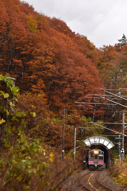 紅葉の刺巻トンネル3