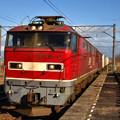 青い空と,赤い機関車