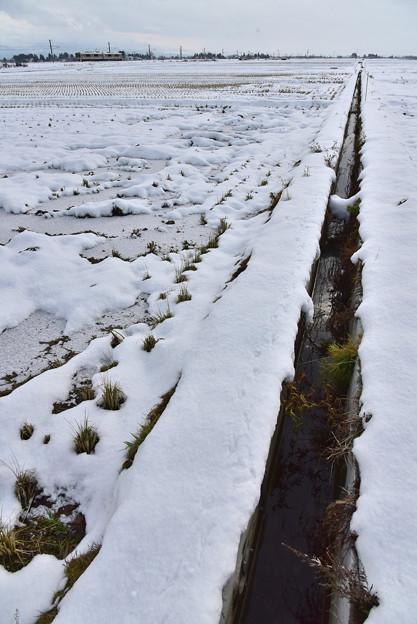 雪の少ない師走3