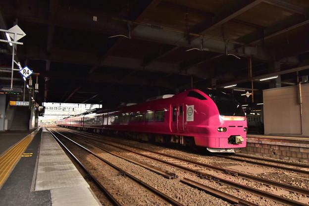 ピンクのいなほ2