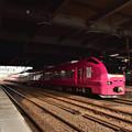 Photos: ピンクのいなほ2
