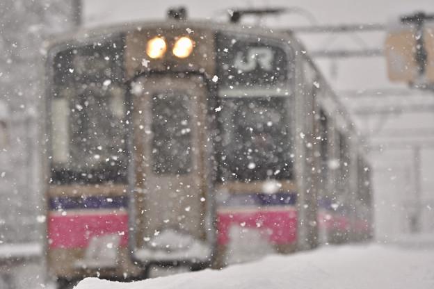 大雪の元日