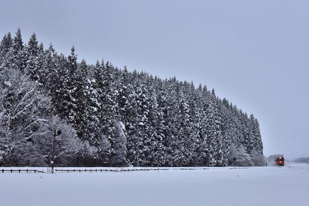 元日の大雪15