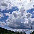 Photos: JUL_6889_148