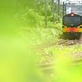 久々のイベント列車