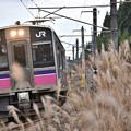 Photos: 田沢湖線回送