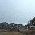 Photos: 雨のフロントガラス