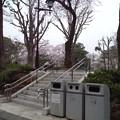Photos: 上野動物園前の遊園地跡。小池ーきれいにすればいいってもんじゃないだろ!