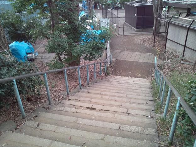 すり鉢山の階段。