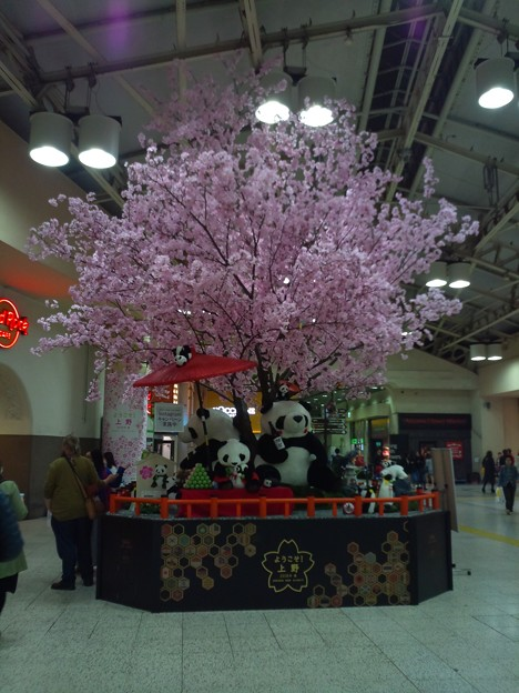 上野駅内のパンダとかいろいろいる桜の木(偽)