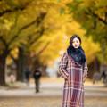 Photos: 銀杏