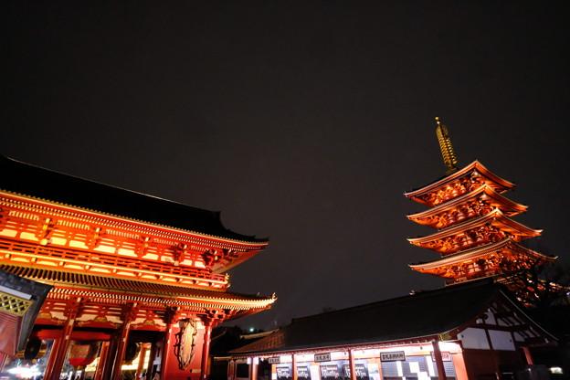 浅草寺の夜桜1