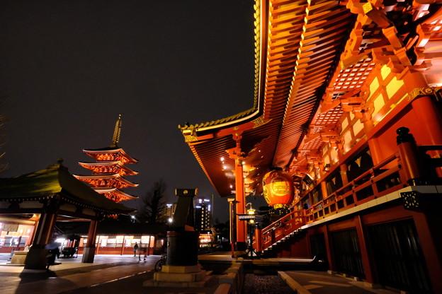浅草寺の夜桜2