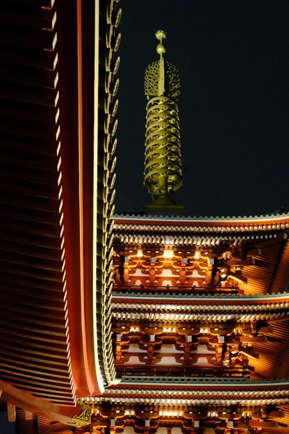 浅草寺の夜桜10