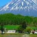 写真: 山と学校