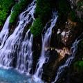 写真: 美瑛 白ひげの滝1